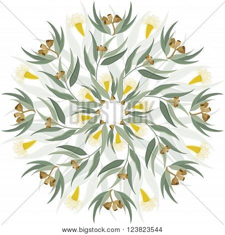 Abstract circular ornament mandala with native australian plant eucalyptus leaves and flowers. Round floral pattern isolated on white background