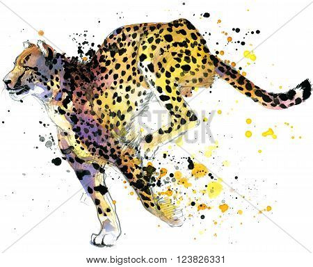 Cheetah. cheetah Tee shirt graphics. cheetah illustration with splash watercolor textured background. cheetah watercolor  illustration for fashion print, poster, textiles, fashion design