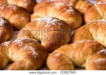 Freshly Baked Brioche Bread Rolls