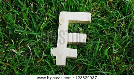Frank sign of wood isolated on grass