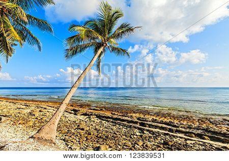 Wild coast on uninhabited island in the Indian Ocean Maldives
