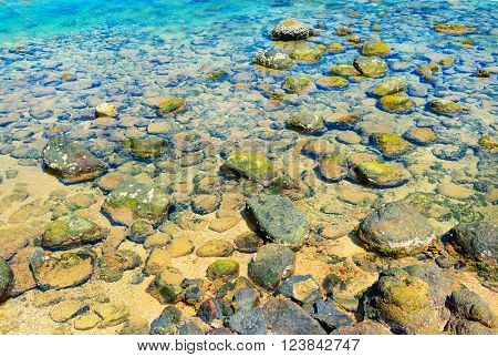 seabed with rocks and corals