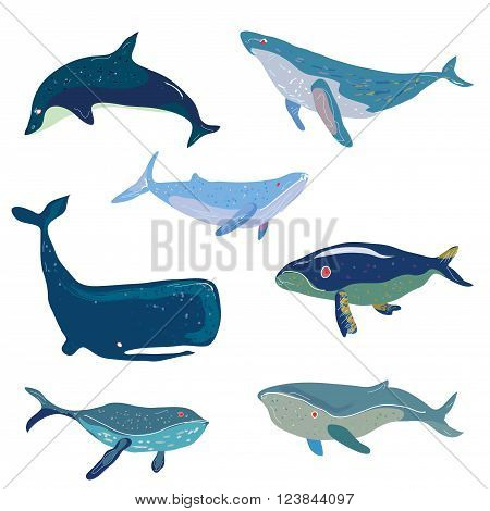 Whales set - hand drawn design vector illustration