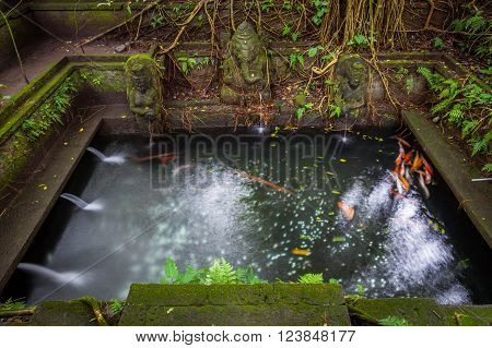 Bathing Pool in the The Holy Spring Temple, Sacred Monkey Forest Sanctuary, Ubud, Bali, Indonesia