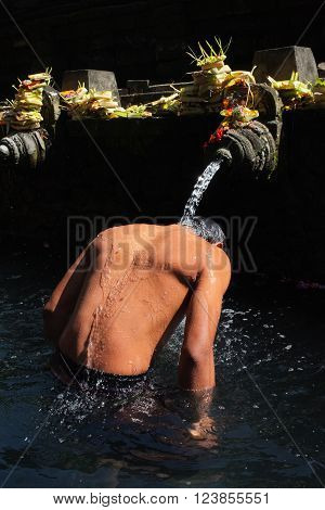 BALI INDONESIA - March 23 2016: Beneath sacred offerings a Balinese-Hindu man bathes in holy water originating from a volcanic spring on March 23 2016 at Tirtha Empul Temple in Tampaksiring Bali Indonesia.