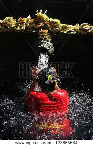 BALI INDONESIA - March 23 2016: Beneath sacred offerings a Balinese-Hindu woman bathes in holy water originating from a volcanic spring on March 23 2016 at Tirtha Empul Temple in Tampaksiring Bali Indonesia.