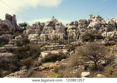 View Of Karst Rocks In El Torcal, Antequera. Spain.