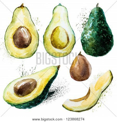 Set with some beautiful watercolor hand drawn avocado