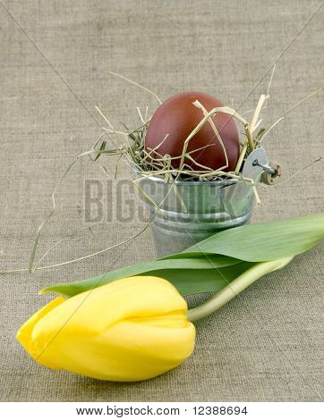 Easter Egg In Small Bucket And Yellow Tulip