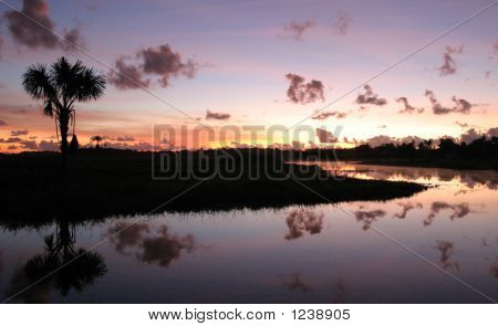 Sunrise In Guyana