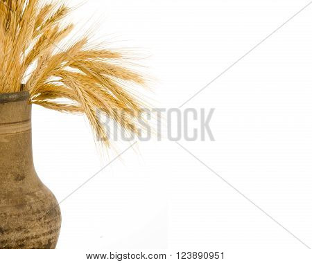 Old crock with a bunch of golden wheat ears isolated on white (with copy space on the right for your text)