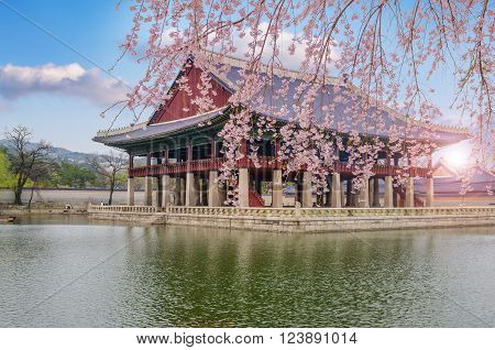 Cherry Blossom In Spring Of Gyeongbokgung Palace In Seoul,korea