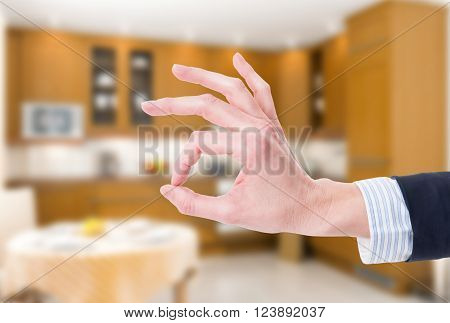 Ok Or Perfect Gesture On House Indoor Background