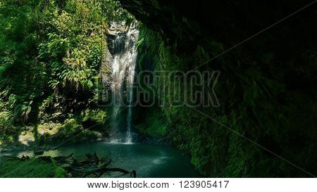 Waterfall in a rain forest of the Amazon Central.
