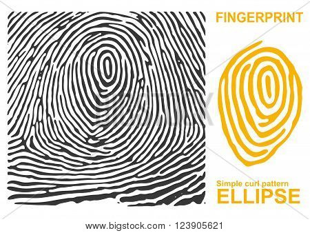 Fingerprint shape. Black fingerprint. Fingerprint secure. Fingerprint identification. ID fingerprint. Push fingerprint for unlock. Fingerprint pressure. Fingerprint vault. Vector Fingerprint.