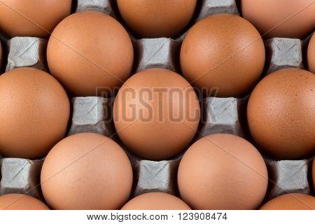 Fresh hens eggs from supermarket still in cardboard egg tray
