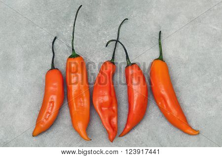 Group of aji amarillo hot chili peppers on stone background from above