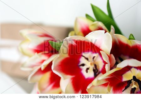 Bouquet of variegated tulips, close up