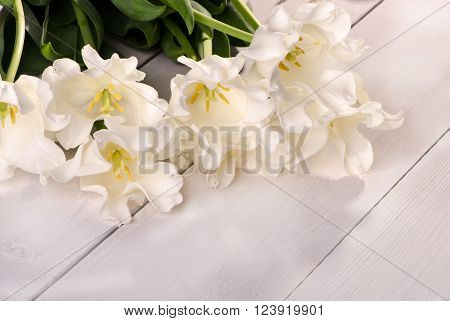 White tulips on a wooden table congratulation