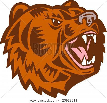 Illustration of a California grizzly North American brown bear head growling looking to the side done in retro woodcut style set on isolated white background.