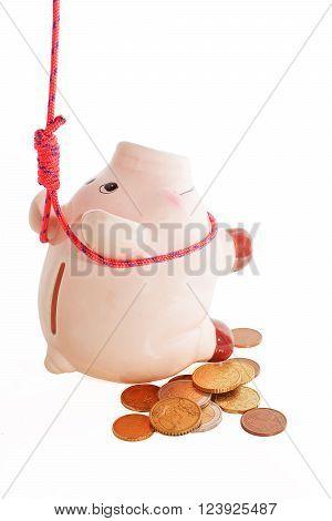 suicide of piggybank  metaphor of financial crisis