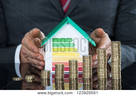 Businessperson Protecting House Near Stack Of Coins