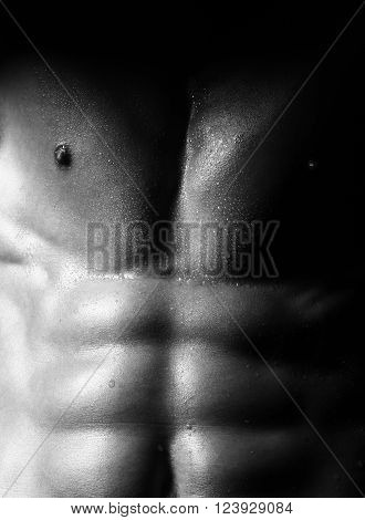 Male Attractive Sexy Torso