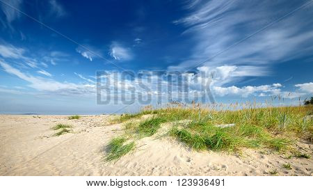Baltic Sea Shore Sandy Beach Against Blue Sky