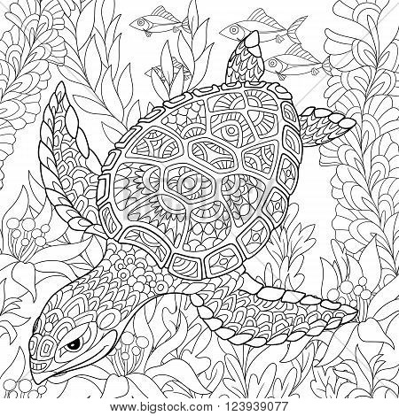 Zentangle stylized cartoon turtle swimming among sea algae. Hand drawn sketch for adult antistress coloring page T-shirt emblem logo or tattoo with doodle zentangle floral design elements.