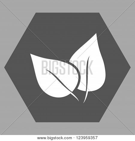 Flora Plant vector pictogram. Image style is bicolor flat flora plant icon symbol drawn on a hexagon with dark gray and white colors.