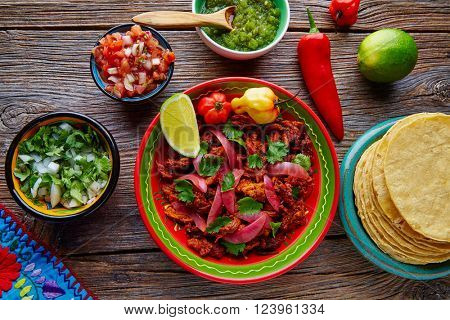 Cochinita Pibil Mexican platillo food with red onion and coriander
