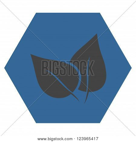 Flora Plant vector icon symbol. Image style is bicolor flat flora plant icon symbol drawn on a hexagon with cobalt and gray colors.