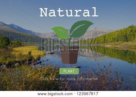 Natural Ecology Environmental Conservation Nature Concept