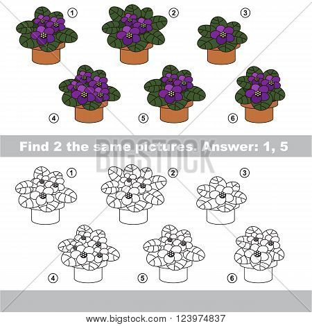 The design difference.  Vector visual game for children. Task and answer. Find two similar Violets