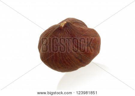 Single Hazelnut Isolated