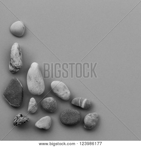 smooth river stone on gray background. zen like concepts. square photo. Free space for text. Copy space. black and white image