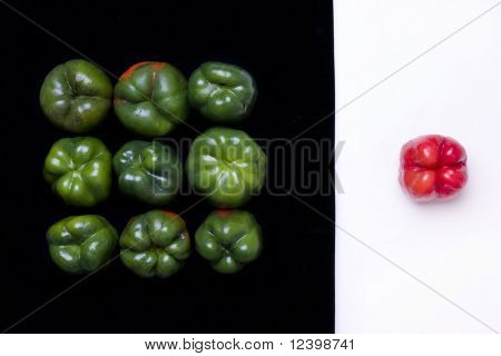 bellpeppers composition