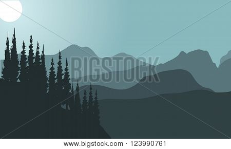 view of spruce and mountain with gra background