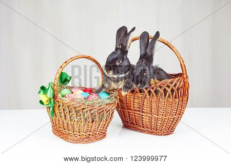Easter basket and a basket with rabbits