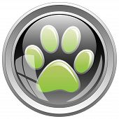 image of paw-print  - Illustration of animal print icon on the black button - JPG