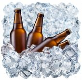 stock photo of tumbler  - Bottles of beer on ice - JPG