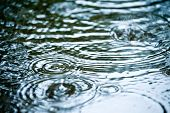 stock photo of rain-drop  - Rain drops rippling in a puddle - JPG