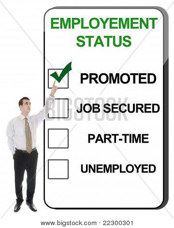 Employement Status