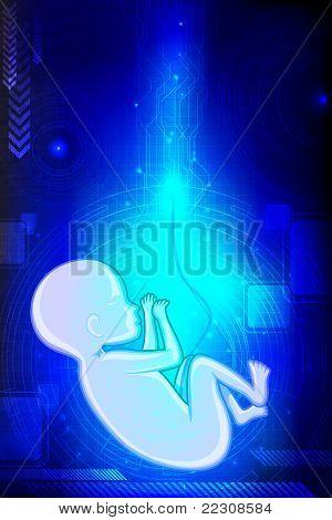Bebé feto