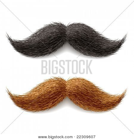 Bigotes falsos. Vector.