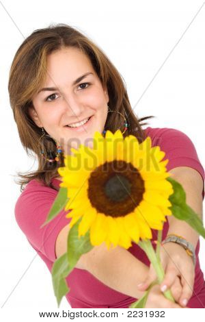 Girl With A Sunflower