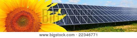 Solarenergie Panels und Sonnenblume.