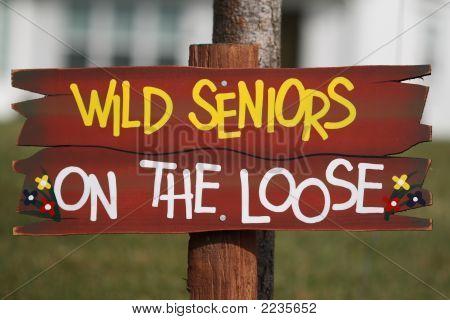 Wild Seniors