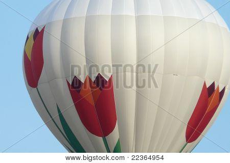 Close-up Hot Hair Balloon