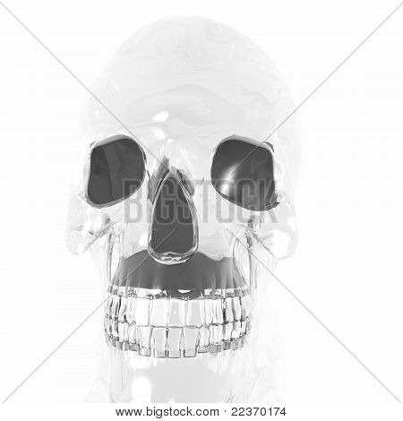 Transparent Crystal Skull
